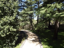 Finca_Paseo-Jardin