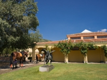 022-FUENTEPIZARRO-LOS ARCOS-GLOBALLY-fotos-nachourbon.com_